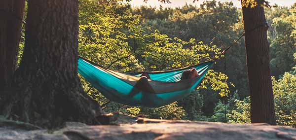 jungle hammock relax