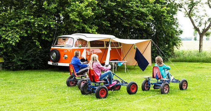 Fun things to bring camping gocarts