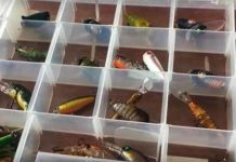 best fishing lures for bass fish