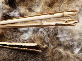 how to make a bamboo fishing spear