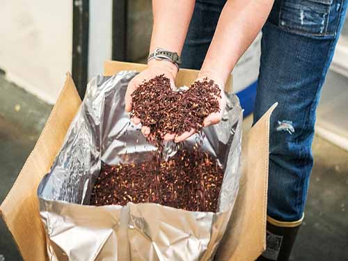 Brown grains perfect for long term food storage