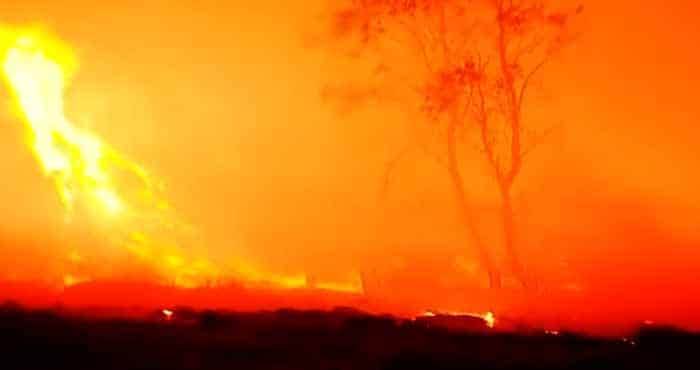 How to protect your house in a bushfire.
